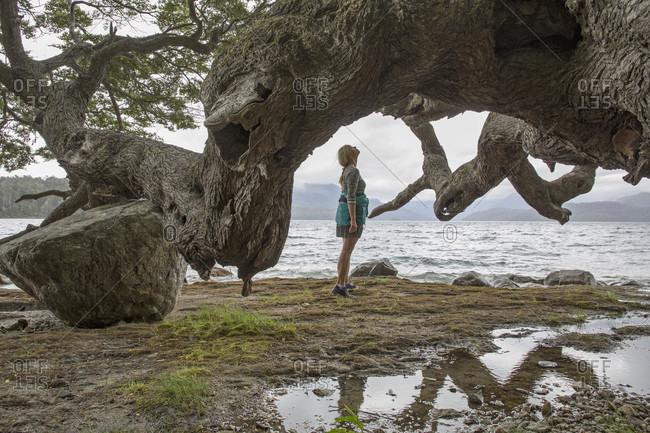Mature woman looks at massive tree limb on lake shore