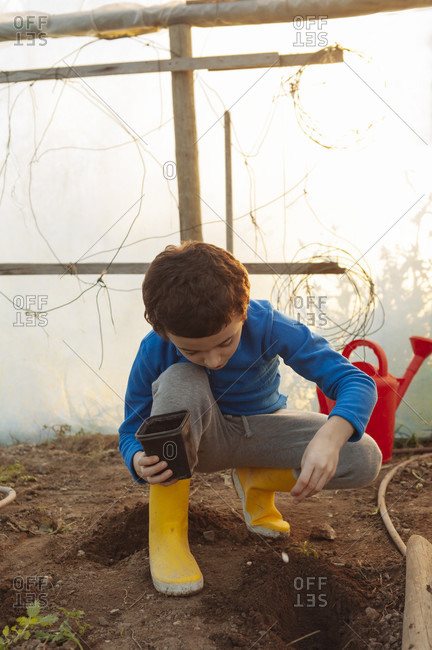Boy Planting Seeds In Family's Organic Greenhouse