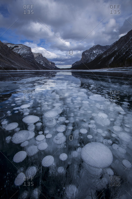 Frozen Methane Bubbles At Barrier Lake, Kananaskis