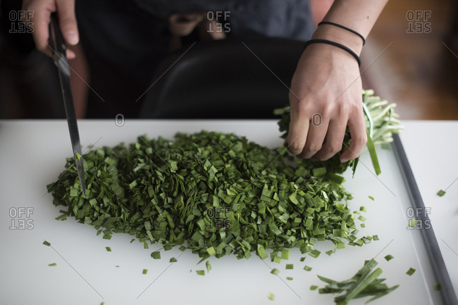 Person chopping up green onions