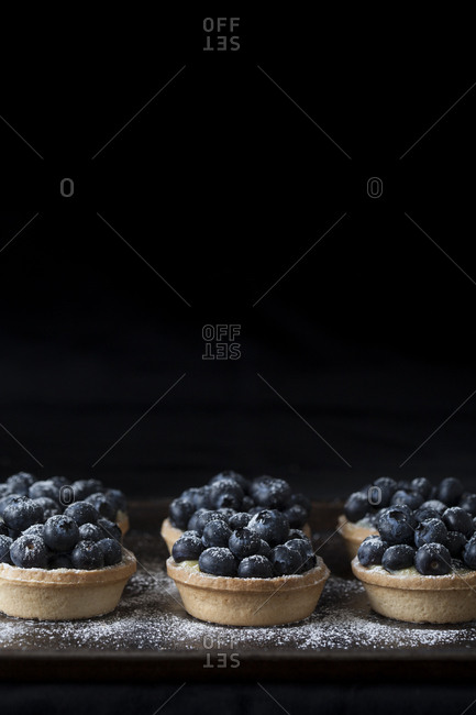 Blueberry tarts on a black background