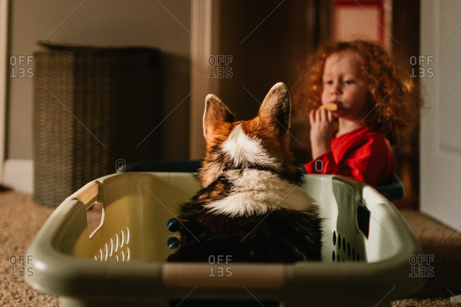 Child and dog sitting in baskets sharing a snack