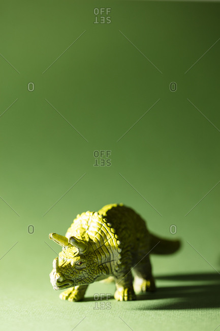 Toy triceratops on a green background