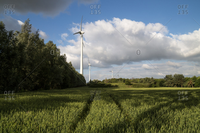 Wind turbines in a beautiful green field