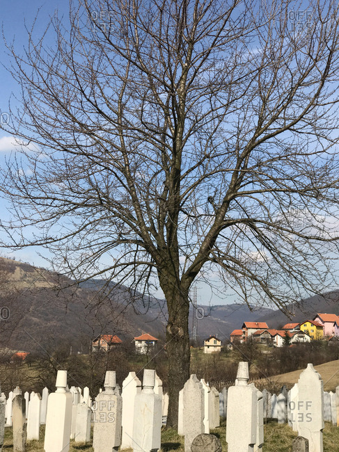 cemetery for muslim people in Sarajevo