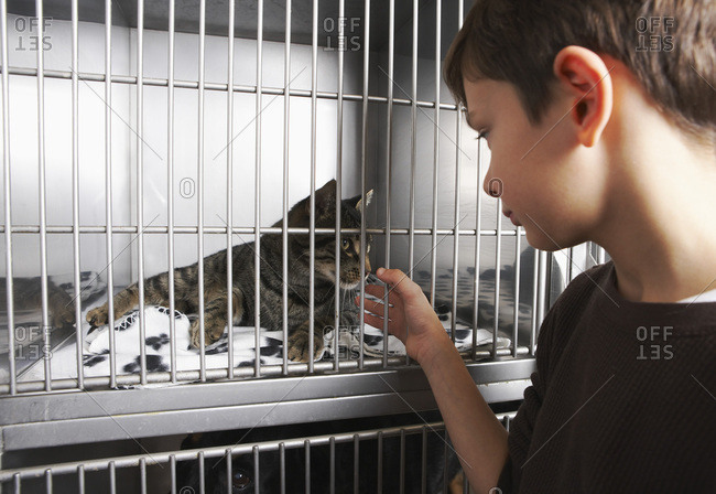 Boy with Cat in Cage