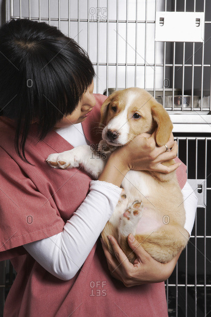 Veterinarian with Puppy
