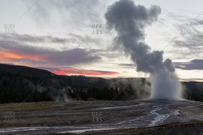 USA- Yellowstone Park- Wyoming- Old Faithful Geyser erupting