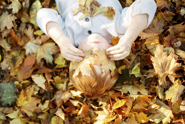 Boy covering eyes with fall leaves