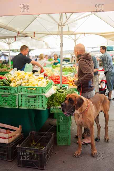 Ljubljana, Slovenia - July 22, 2015: Shopper at a farmer's market with his large brown dog
