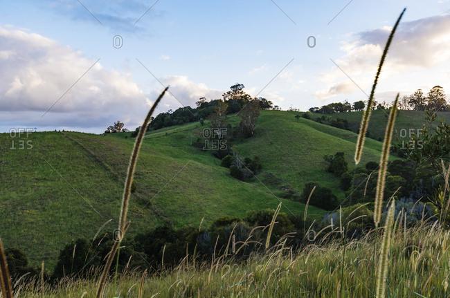 Sunshine Coast Hinterland sunset Queensland Australia