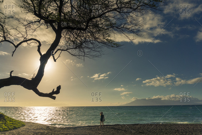 Traveler on Oneuli beach, Maui, Hawaii, Usa
