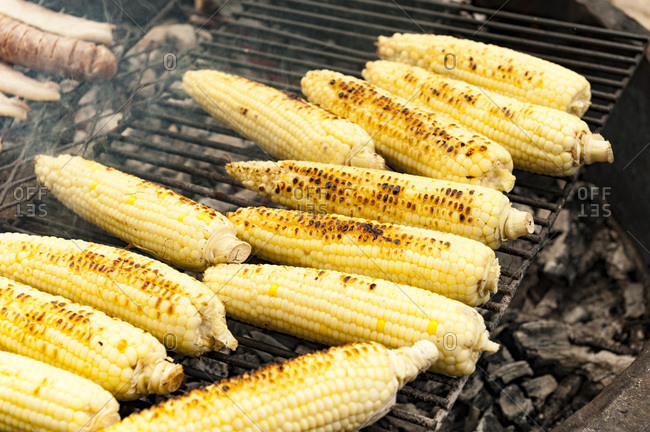 Corn being grilled on an open fire grill