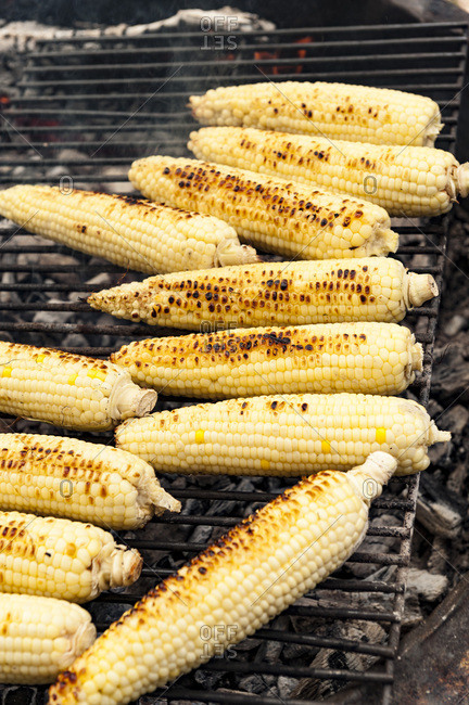 Corn on the cob being grilled on an open fire grill