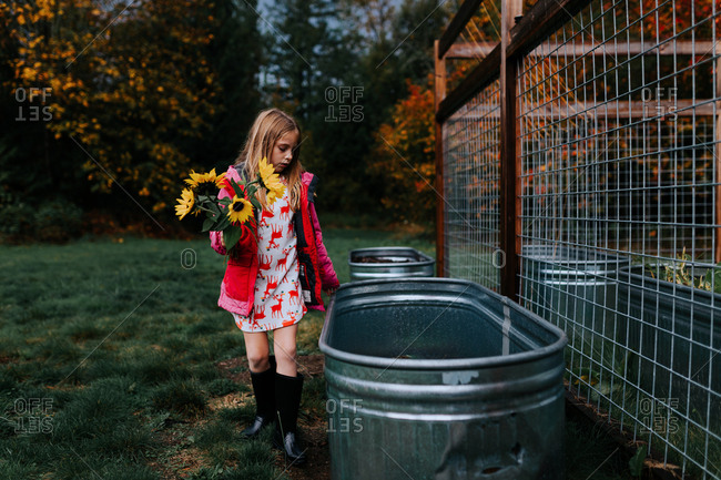 Blonde girl carrying sunflowers by a metal garden bed