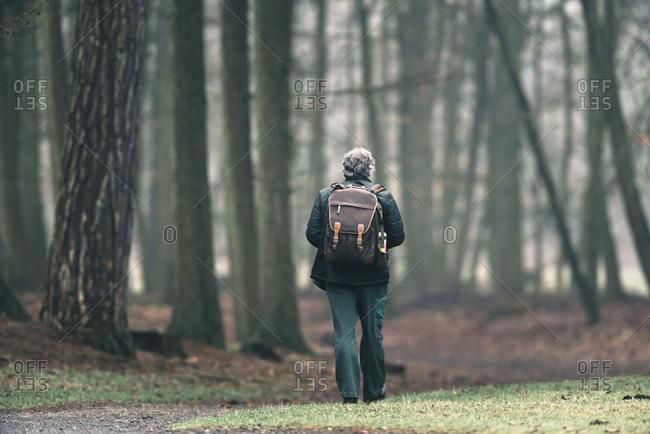 Tourist walking on footpath in misty forest.