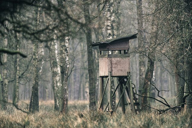 High seat for hunting in forest.