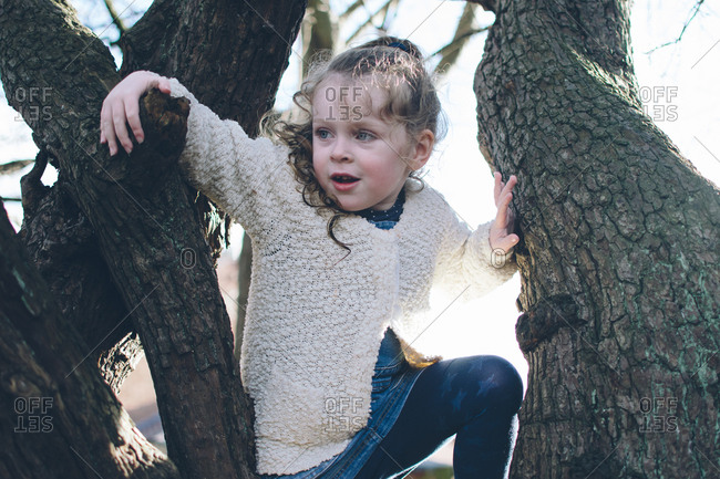 Little girl climbing tree at dusk