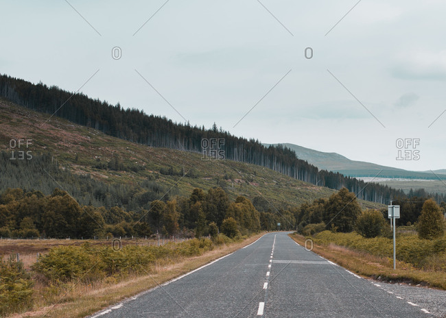 Road through rural forested hills
