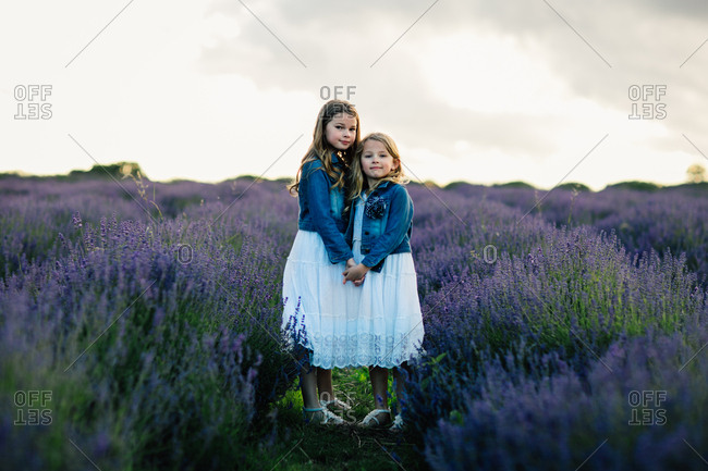 Two sisters holding hands and standing together in a field of lavender flowers