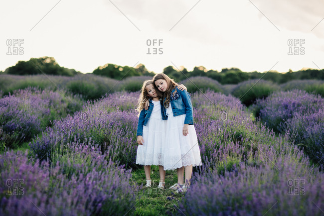 Two sisters standing with their arms around each other in a field of lavender flowers