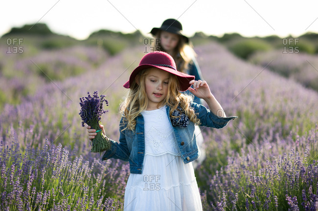 Girl holding a bunch of freshly picked lavender flowers standing in a field with her sister