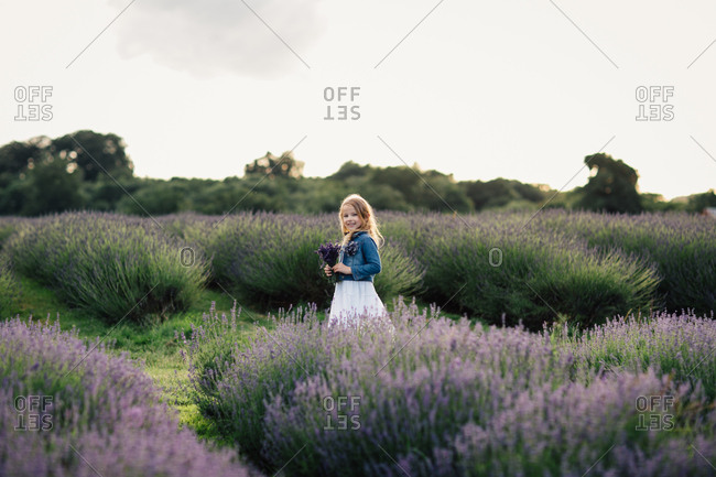 Smiling girl holding a bunch of freshly picked lavender flowers standing in field