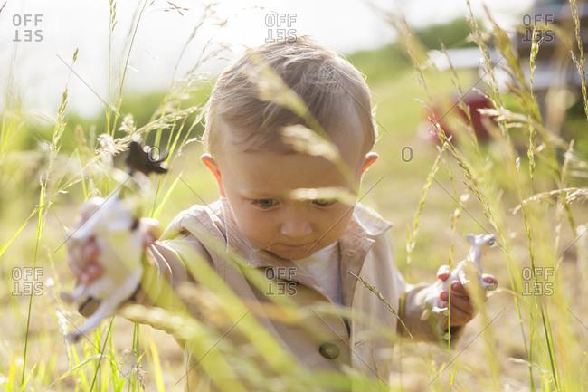 Baby boy  walking in tall grass