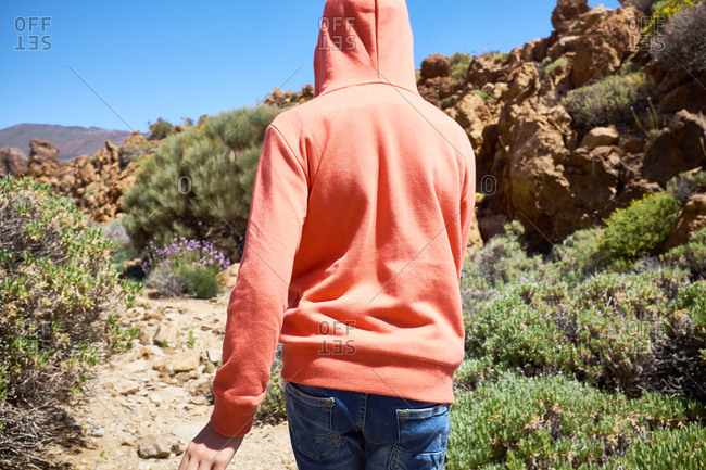 Back view of young man in bright orange hoodie walking along picturesque rocky terrain with green bushes and purple flowers