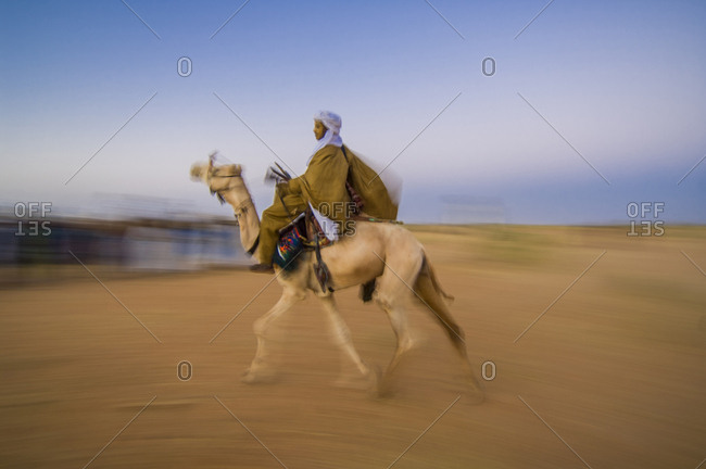 A camel race during Gerewol traditional Bororo meeting in Niger