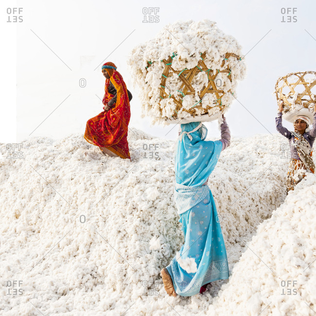 Bhopal, India - February 5, 2013: Women selecting cotton in a textile factory