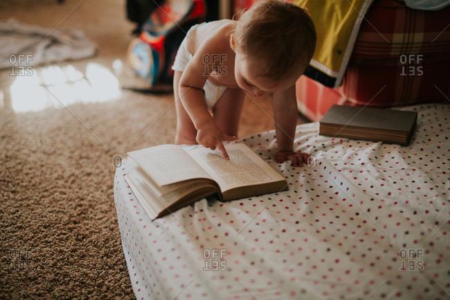 Toddler girl looking at a book