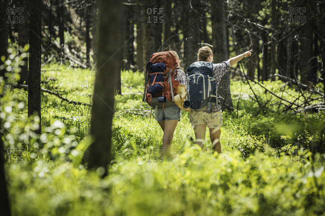Rear view of teenage girl and young female hiker pointing in forest, Red Lodge, Montana, USA