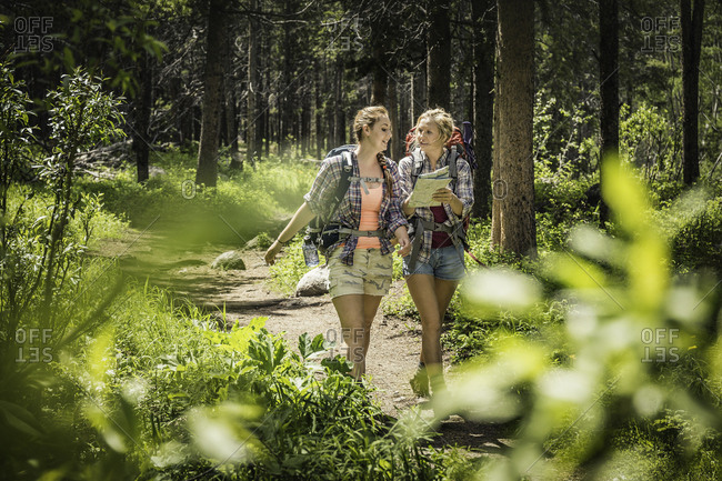 Teenage girl and young female hiker looking at map in forest, Red Lodge, Montana, USA