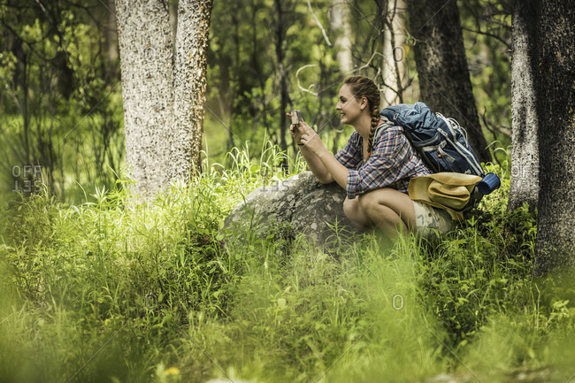 Young female hiker photographing in forest, Red Lodge, Montana, USA