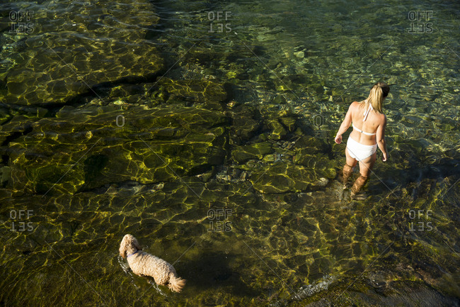 Overhead view of woman in dog wading in water