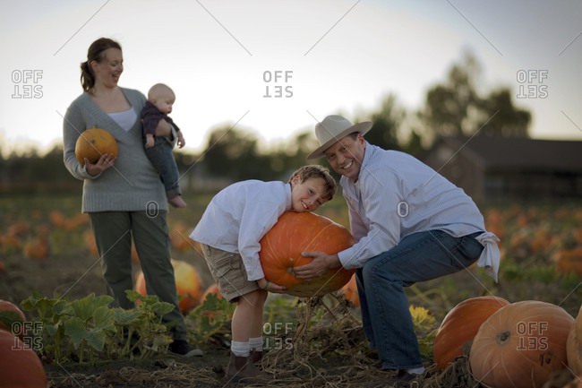 Family choosing a Halloween pumpkin from a field
