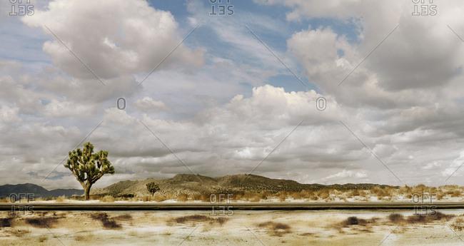 Desert through the highway