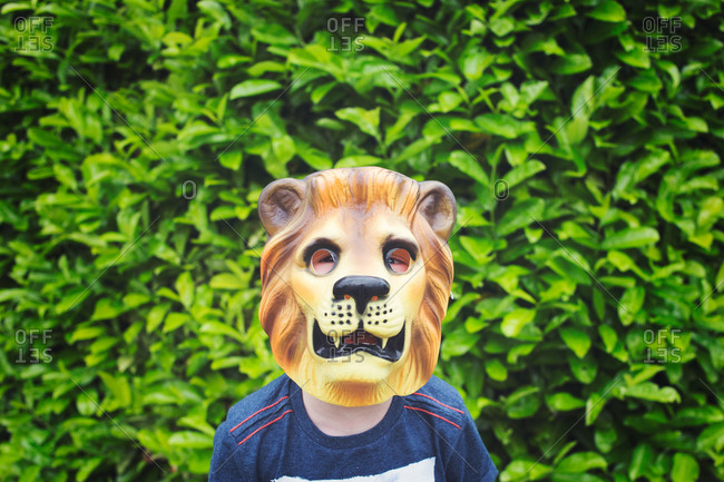 Boy wearing lion mask
