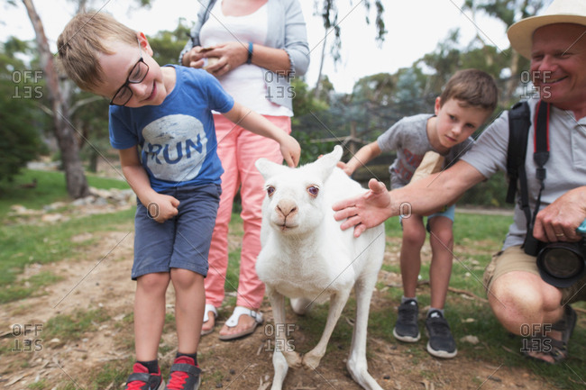 Family petting an albino kangaroo