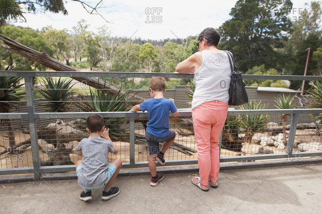 Grandmother and grandsons at a zoo