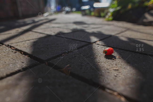 Single small tomato lying on patio