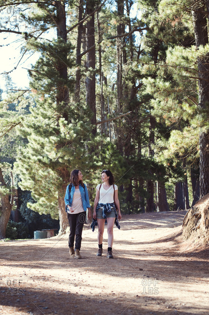 Female friends talking while walking in forest