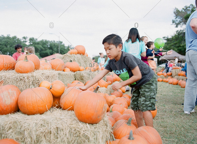 Boy selecting pumpkin at farm