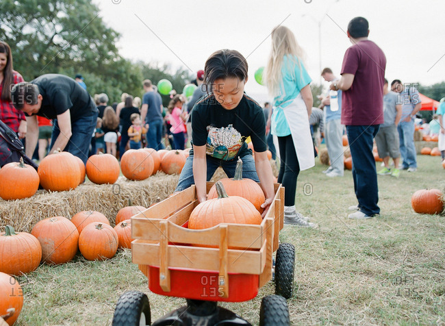 Boy putting pumpkin in wagon at farm