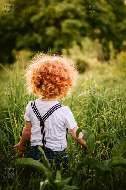 Back view of toddler child in suspenders in tall grass