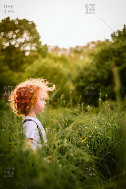 Cute toddler boy with curly red hair in tall grass