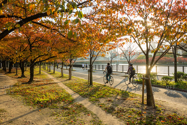 Osaka, JAPAN - November 15, 2014: Autumn Scene of Riverside park, Osaka.