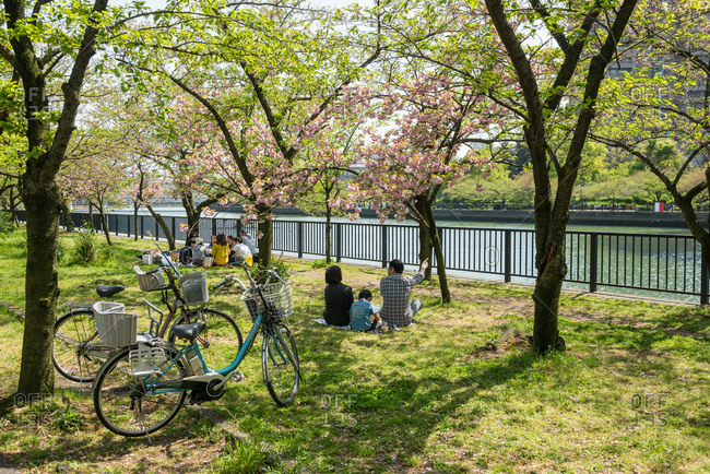 Osaka, JAPAN - April 18, 2015: Happy family on picnic in park.