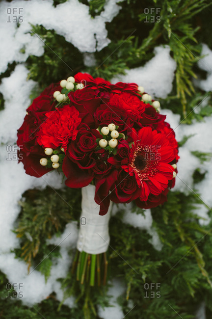 Red flower bouquet on winter setting